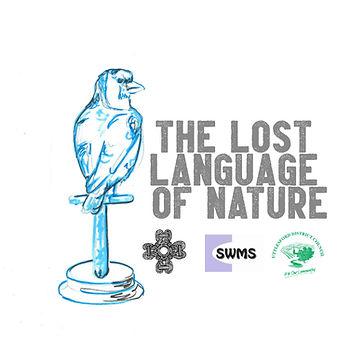 L.L.O.N Logo