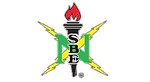 NSBE logo_remove background.png