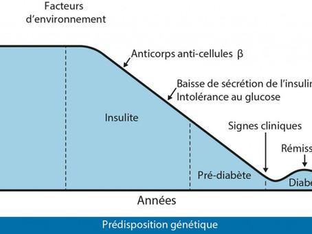 Apparition du diabète de type 1