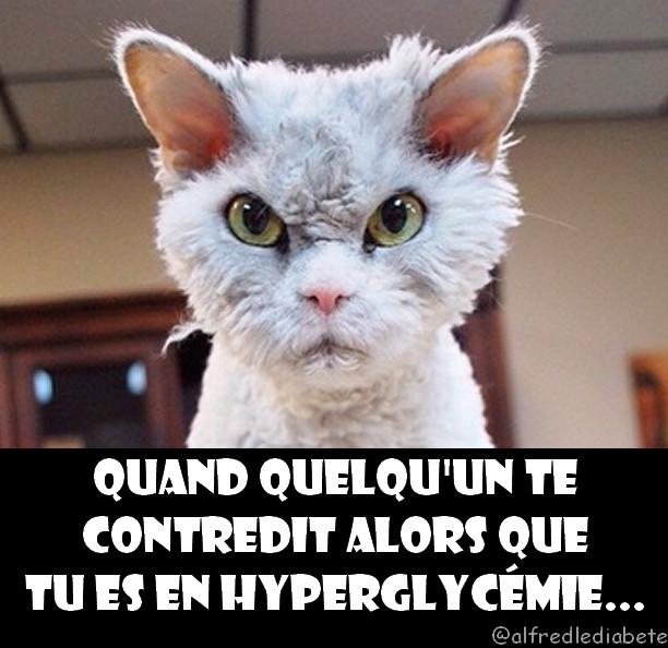 Quand on te contredit alors que tu es en hyperglycémie - Alfredlediabète