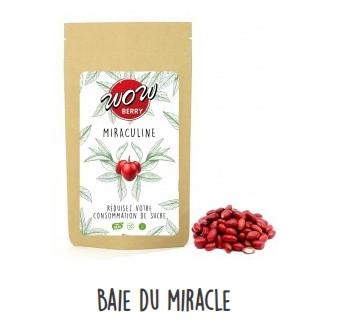 Baie du miracle - Miraculine - Wow Berry - Alfredlediabete
