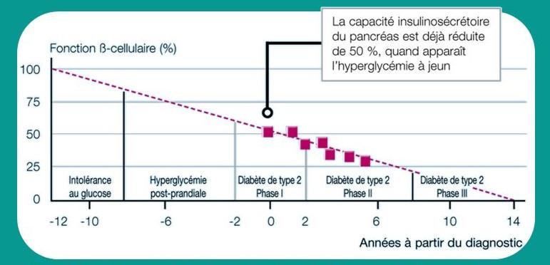 Apparition du diabète de type 2 - Slideplayer.fr