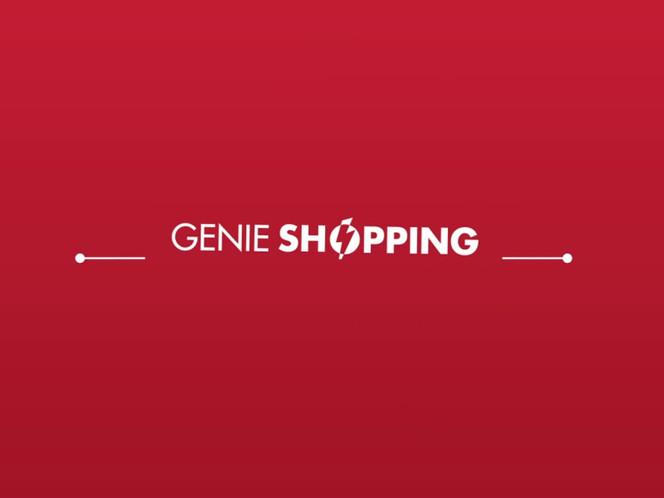 GSN Logo Sting