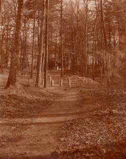 Thoreau's original cabin site