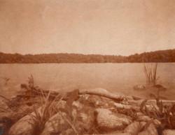 Walden Pond, MA