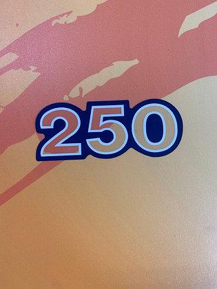 KLT250 KDX250 Side Mark