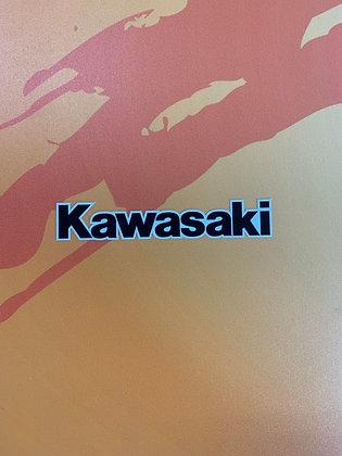 Kawasaki Trunk