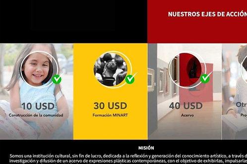 CAMPAÑA DE POCISIONAMIENTO Y GESTION DE DONATIVOS EN USA Y CANADÁ