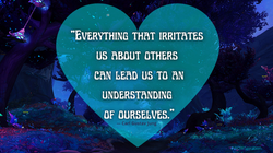 """""""Everything that irritates us about othe"""