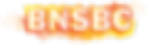 BNSBC logo 2.0.png