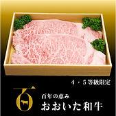 おおいた和牛 サーロインステーキ300g(150×2)ock-001.jpg