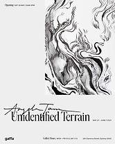 UnidentifiedTerrain_1080x1350.jpg