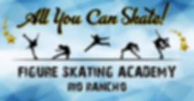 skate-academy-small.jpg