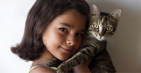 Snoopy's Cat Sitting, Santa Barbara Pet Sitters - Why hire a sitter?