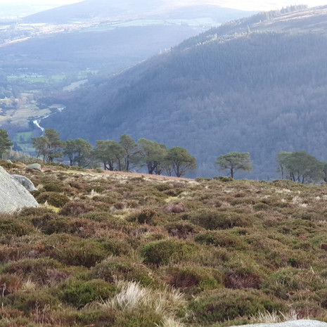 Glendalough and Laragh from the plateau on Camaderry