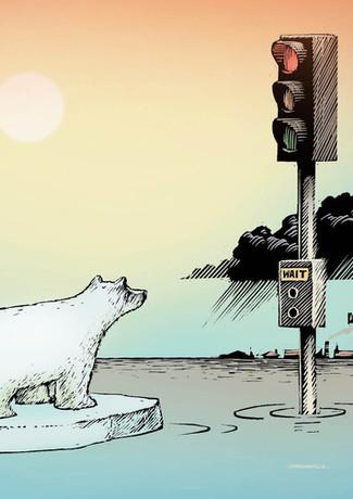 Polar bear waits