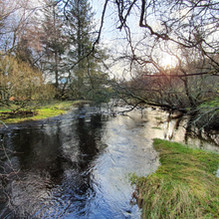 Glendasan in Flood