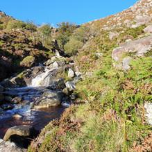 Gentle Flow on Glenealo
