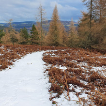Camaderry Path in the Winter