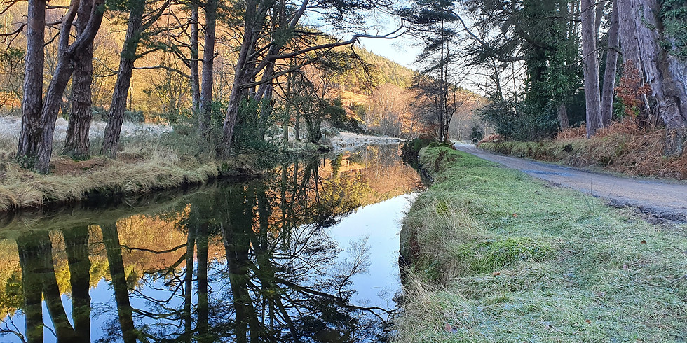 The Glendalough Walk