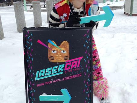 Laser Cat Rocks!