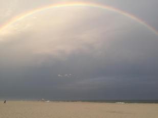 Puerto Rican Rainbow
