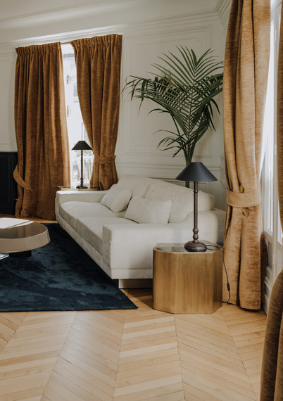 A INTERIOR PROJECT FOR A PRIVATE CLIENT IN PARIS FRANCE