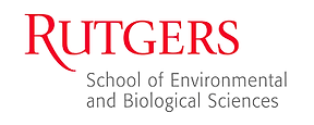SEBS_logo.png
