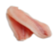Perch%20Fillet_edited.png