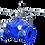 Thumbnail: Ref. 516/38 Pressure Relief / Sustaining Valve