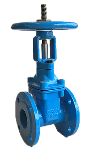 Ref. 200A/10 Resilient Seat Gate Valve Rising Stem Flanged End