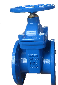 Ref. 09/200A Resilient Seat Gate Valve Non Rising Stem F4/F5 PN25
