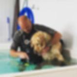 Hydrotherapy.jpg