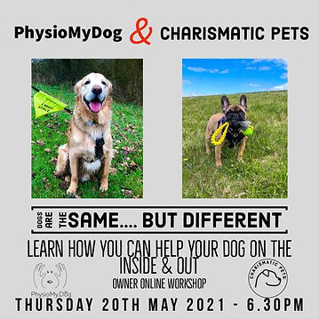 Dogs are the Same but Different PhysioMy