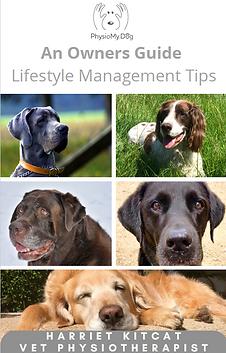 PhysioMyDog Lifestyle Management Tips