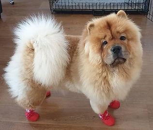 Non Slip Boots.jpeg