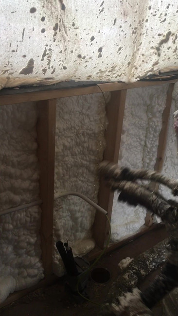 Open Cell Spray Foam to Timber Frame