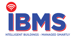 BMS Consulting into Europe