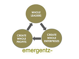 emergenz virtuous circle 2.jpg
