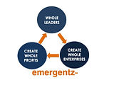 emergenz virtuous circle.jpg