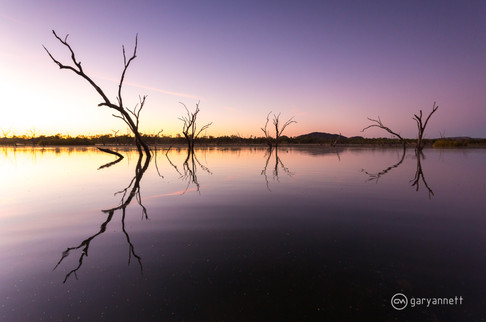 Lily-Lagoon-Kununurra-Sunrise.jpg