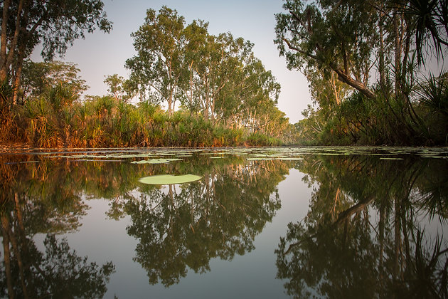 Creek Reflections - GA0036