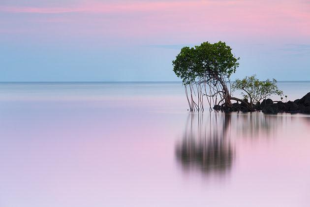 Honeymoon Bay - GA0013
