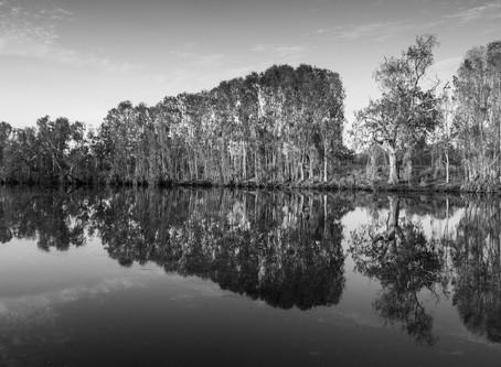 King Edward River Reflections...