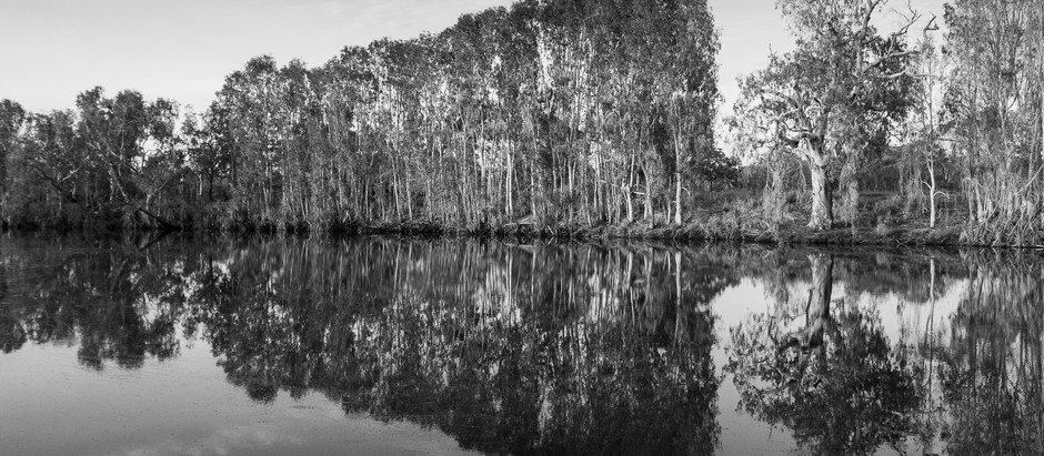 King Edward River Reflections...