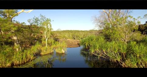 Creek-Reflections-01