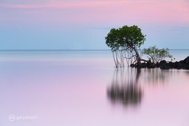 Honeymoon-Bay-Sunrise.jpg