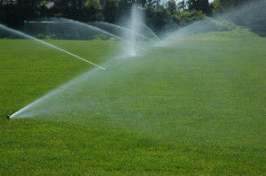 Meston Brothers Irrigation installation rotors spraying grass