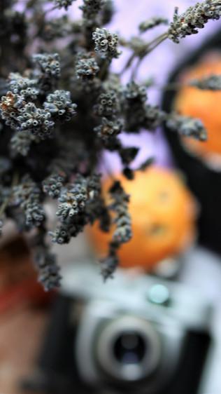 Muffini s lavandom i borovnicama- Lavender and blueberry muffins