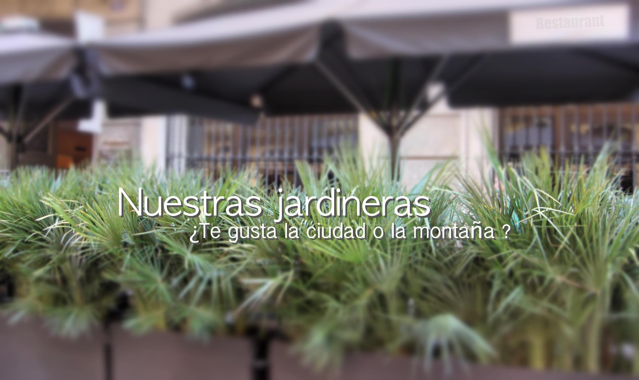 sansa jardineras